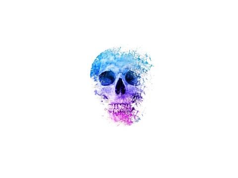 Foto schedel