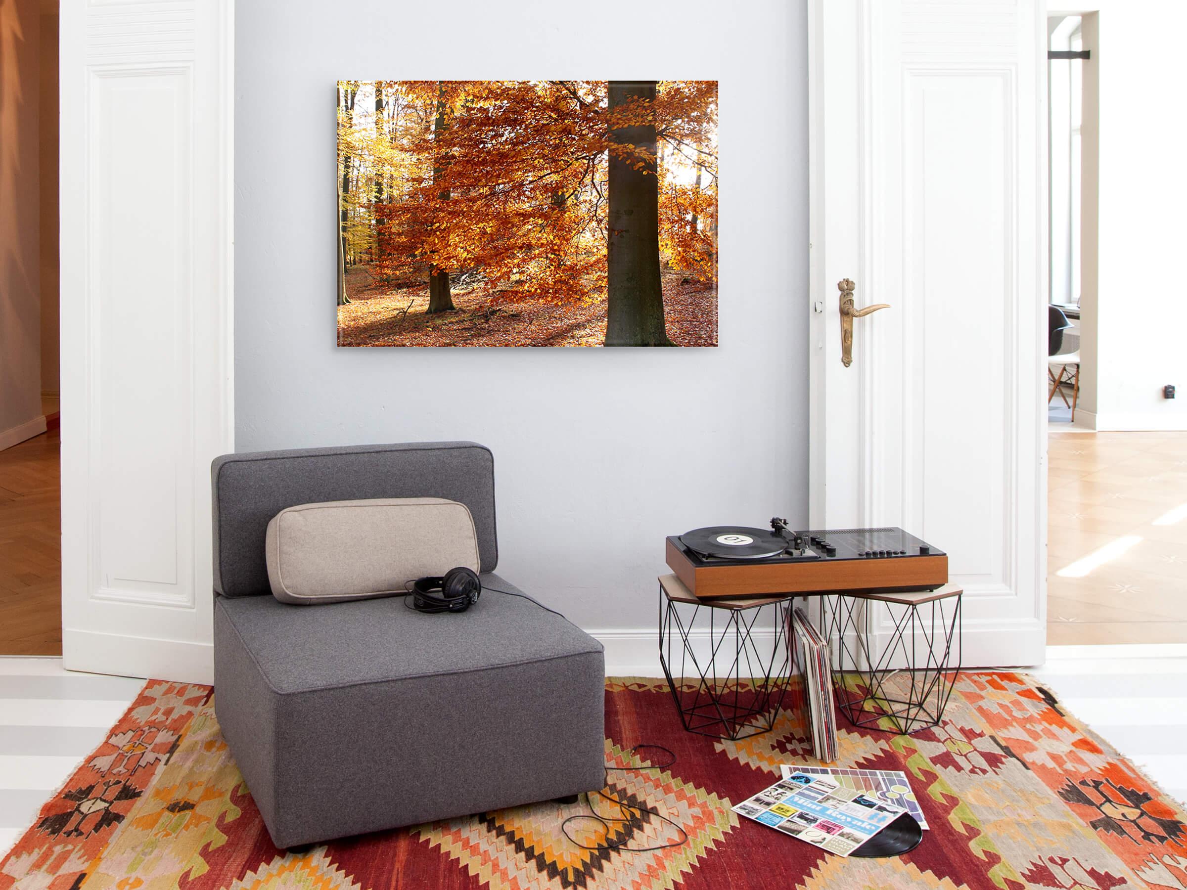 Foto decoratie herfst winter boom